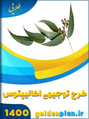 دنلود طرح توجیهی کاشت درخت اکالیپتوس۱۴۰۰